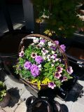 Purple & Plum Floor Basket