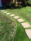 Synlawn Office Path